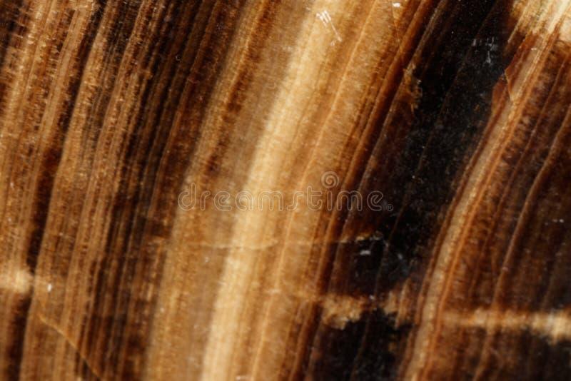 Makro- kamienny kopalina marmuru onyks na czarnym tle obraz royalty free
