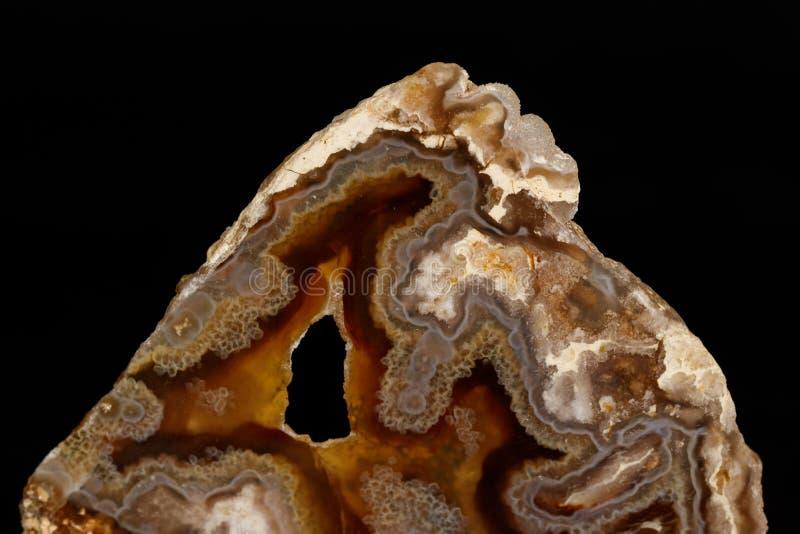 Makro- kamienny kopalny agat na czarnym tle obraz royalty free