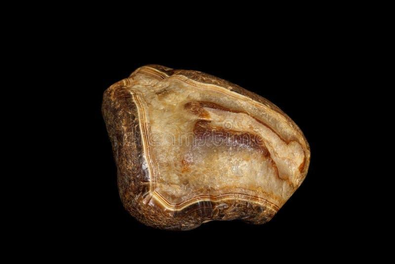 Makro- kamienny kopalny agat na czarnym tle fotografia stock
