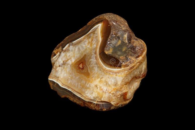 Makro- kamienny kopalny agat na czarnym tle fotografia royalty free