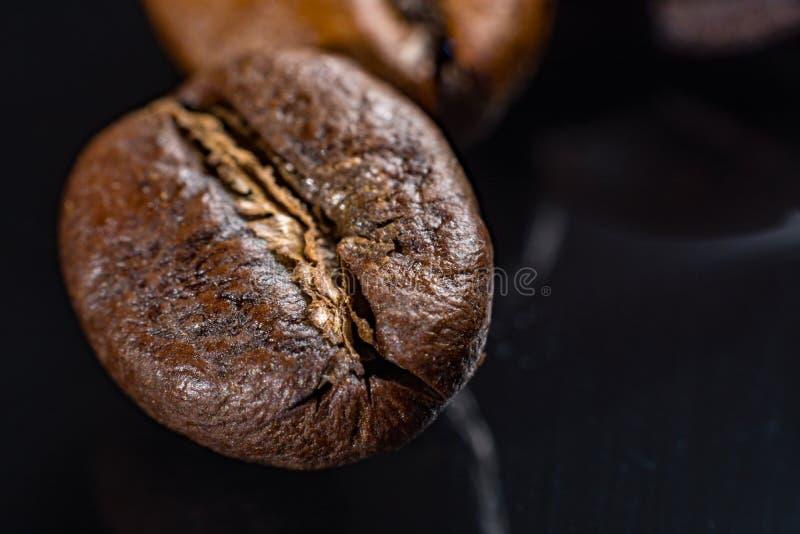 Makro- kolekcja, piec czarne kawowe fasole zamyka up zdjęcie royalty free