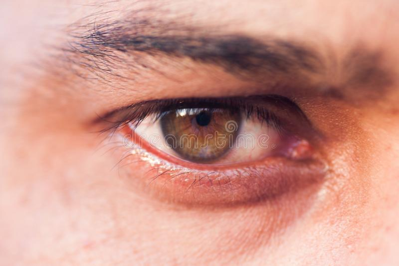 Makro- ludzki oko zdjęcia stock