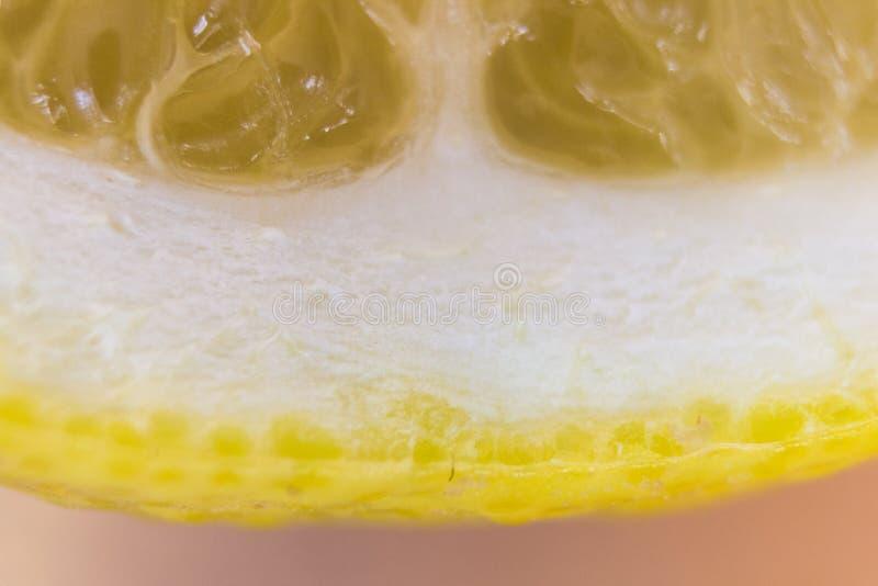 Makro- plasterek świeża cytryna zdjęcia stock