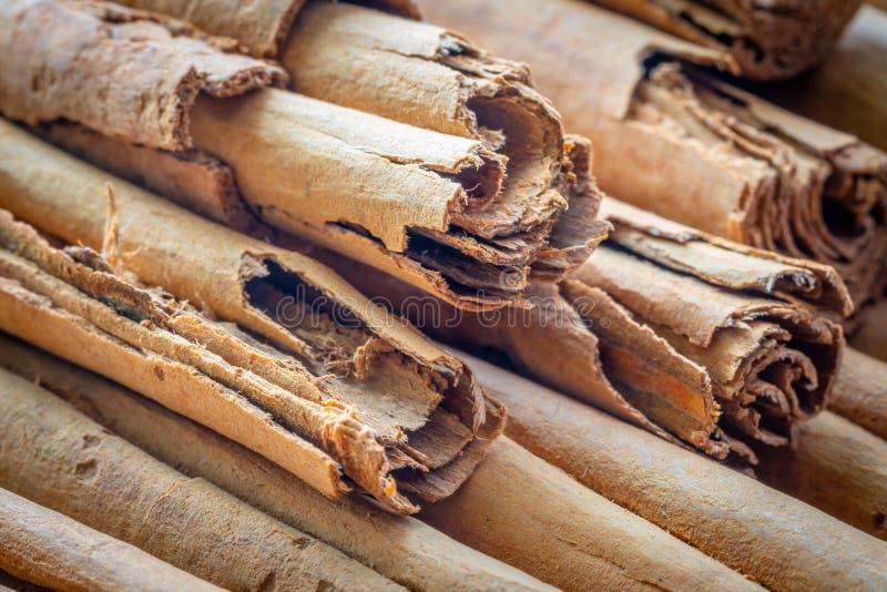Makro-, podprawa, naturalny Ceylon cynamon, kije, w górę zdjęcia royalty free