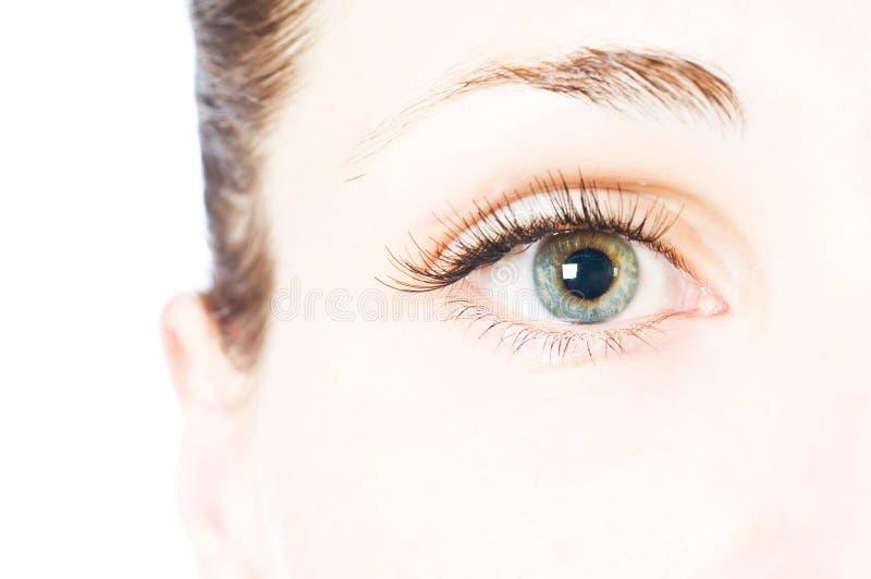 Makro schönes weibliches Auge stockfotografie
