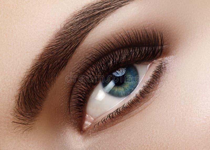 Makro schönes weibliches Auge der Nahaufnahme mit perfekten Formaugenbrauen Säubern Sie Haut, natürliches rauchiges Make-up der M stockfotos