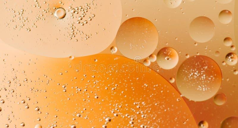 Makro som skjutas av bakbelyst vatten-olja emulsion över kulör bakgrund arkivbilder