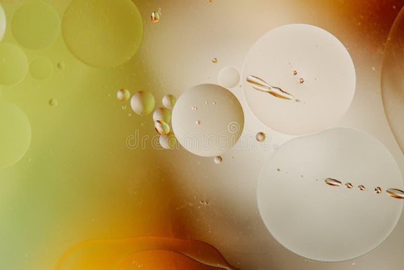 Makro som skjutas av bakbelyst vatten-olja emulsion över kulör bakgrund fotografering för bildbyråer