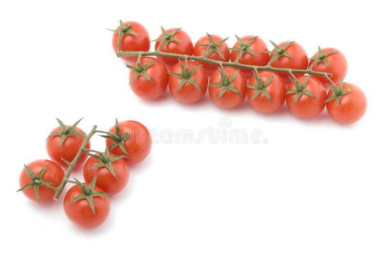 makro- surowy pomidorowy biel zdjęcie stock