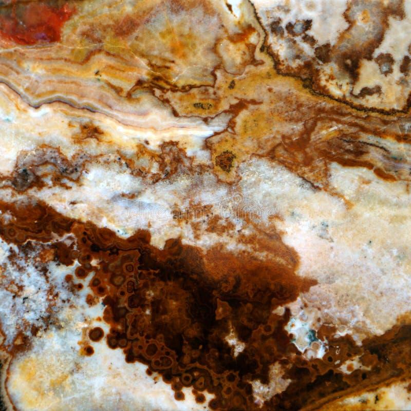 Makro- tekstura natura - krajobrazowy jaspis fotografia royalty free