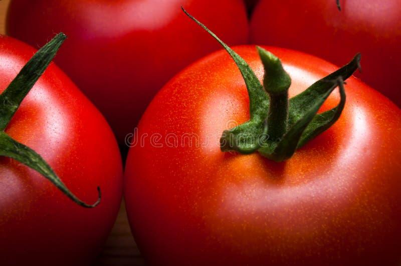 Makro von roten Tomaten lizenzfreies stockfoto