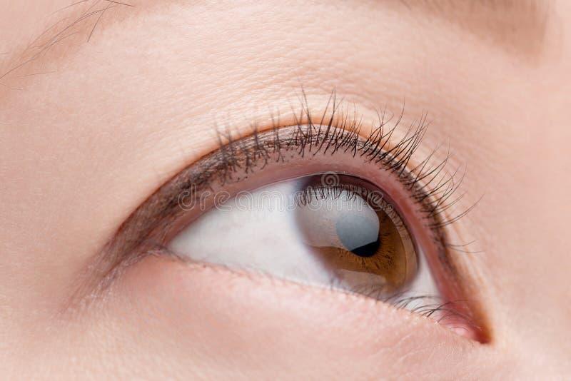 Makro weibliches Auge stockbild