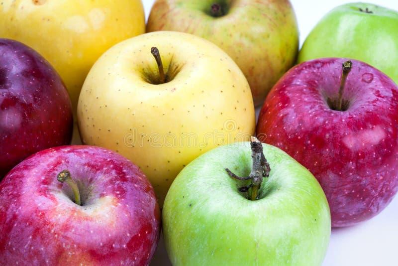 Makro- widoku organicznie jabłczane owoc Różni jabłka: czerwony kolor żółty, zieleń, pomarańcze piękno tekstura, wyszczególnia i  obraz royalty free