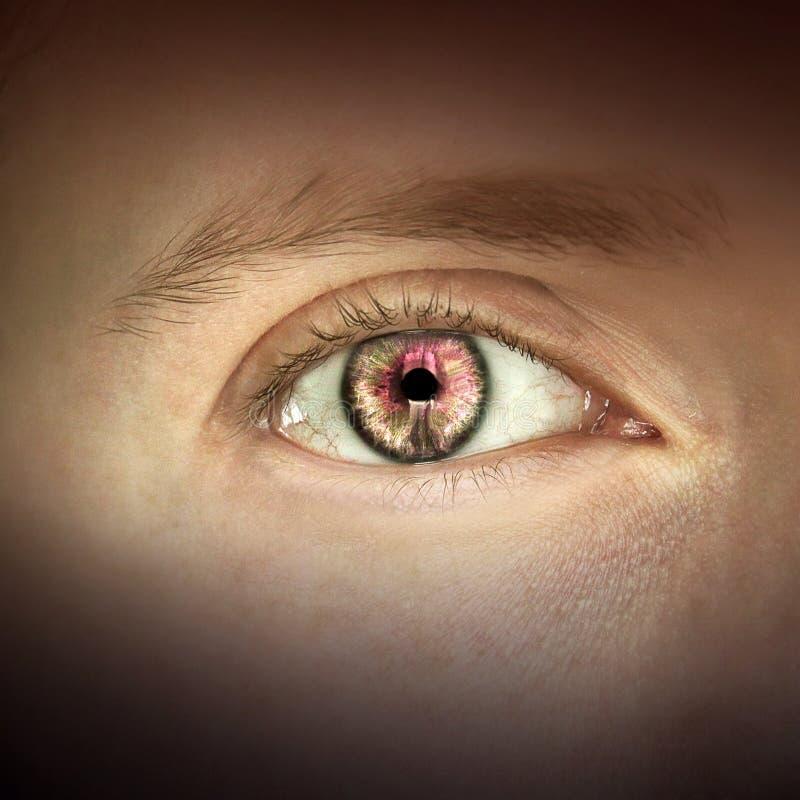 Makro- wizerunek ludzki oko zdjęcie stock