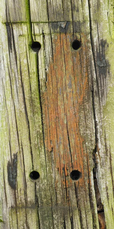 Makro wood of a railroad tie stock photos