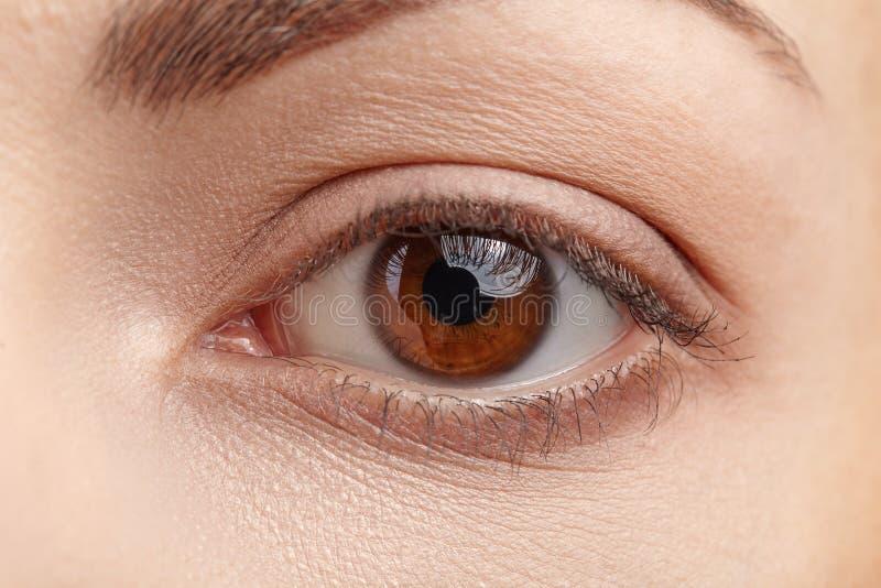 Makrobild av det mänskliga ögat arkivbilder