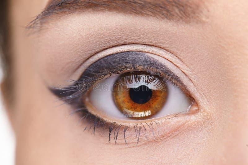 Makrobild av det mänskliga ögat härligt kvinnabarn för blått öga royaltyfri fotografi