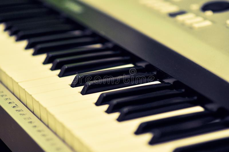 Makrobild av ett elektroniskt piano royaltyfri fotografi