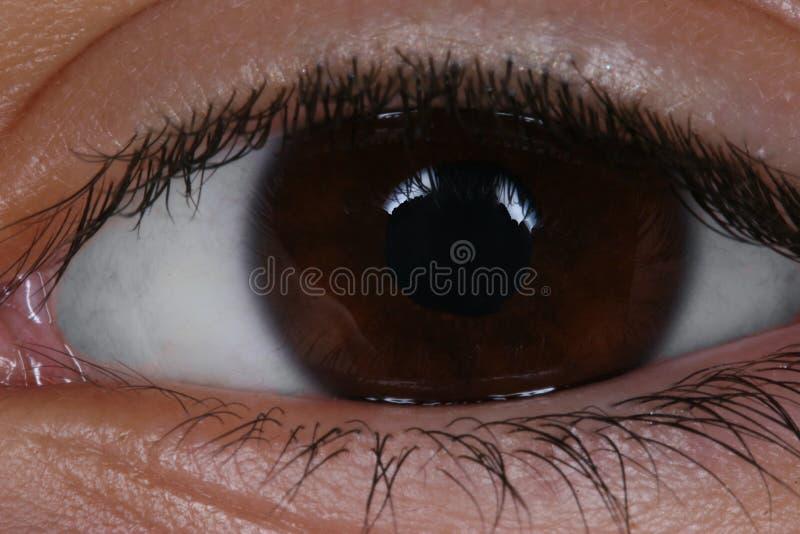 Makrobild des menschlichen Auges stockfoto