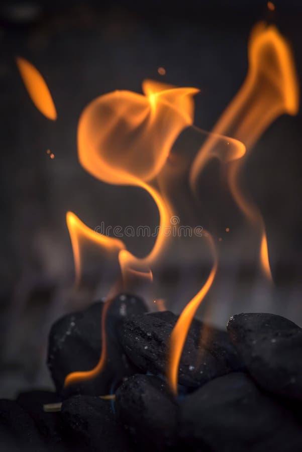 Makrocloseup av flammor på kol i grillfestgrop royaltyfri bild