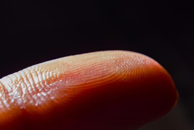 Makrocloseupsikt av fingeravtrycket royaltyfria bilder