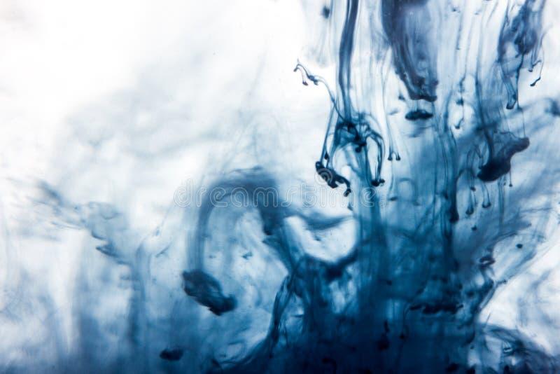 Makroen blå vattenfärgmålarfärg för abstrakt begrepp tappar i vatten med vit bakgrund royaltyfri foto