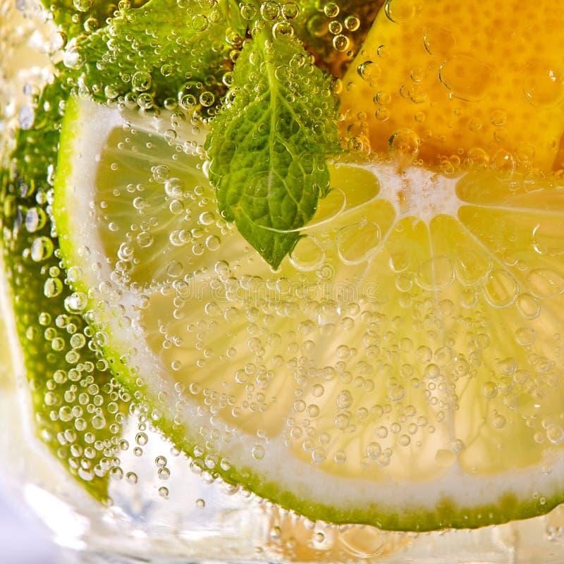 Makrofoto av nya skivor av grön limefrukt, den gula citronen och mintkaramellbladet med bubblor i ett exponeringsglas Sommarf?rny royaltyfri bild