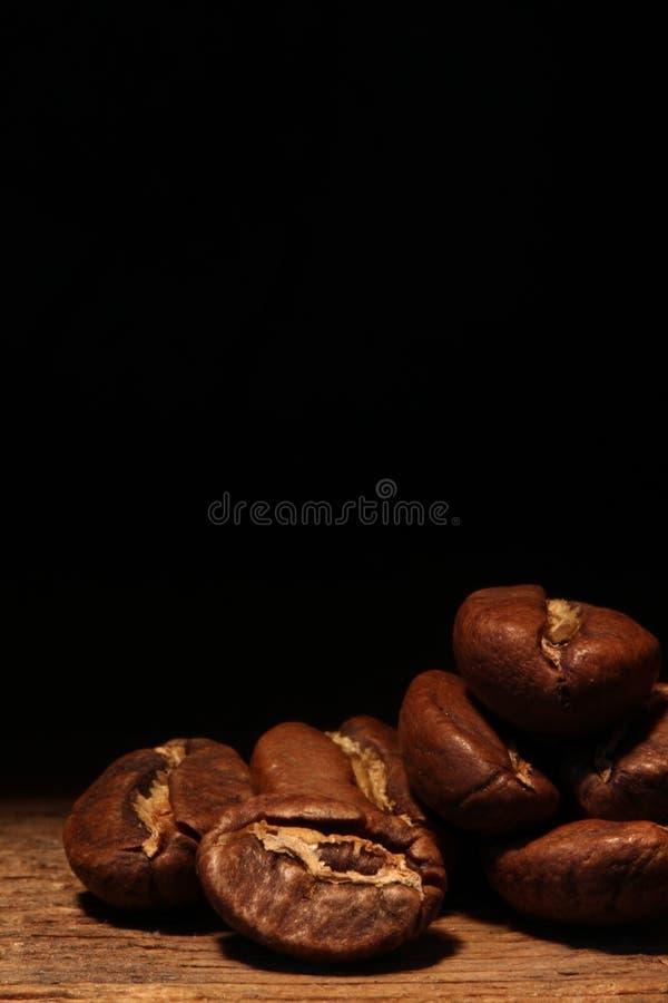 Makrokaffebönor arkivbild