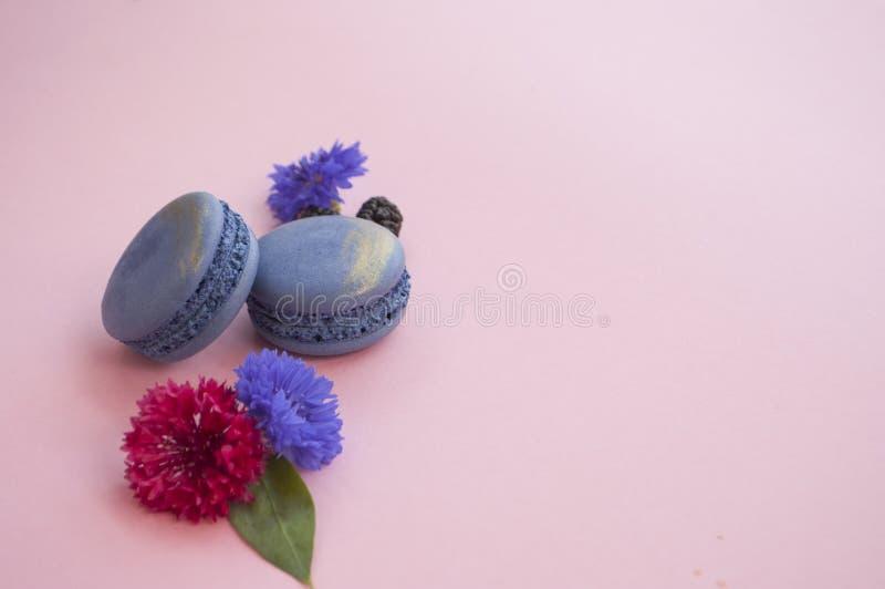 Makron, blommor och bär på rosa bakgrund arkivbild