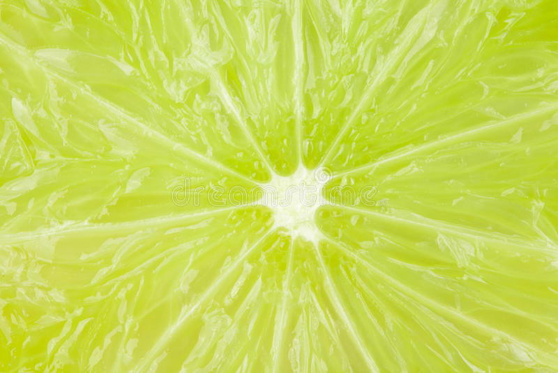 Makronahrungsmittelansammlung - Kalkbeschaffenheit lizenzfreie stockfotografie