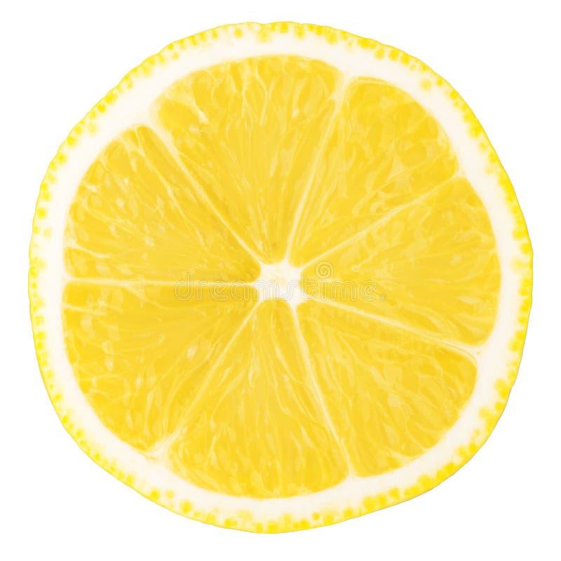 Makronahrungsmittelansammlung - Zitronescheibe stockfotografie