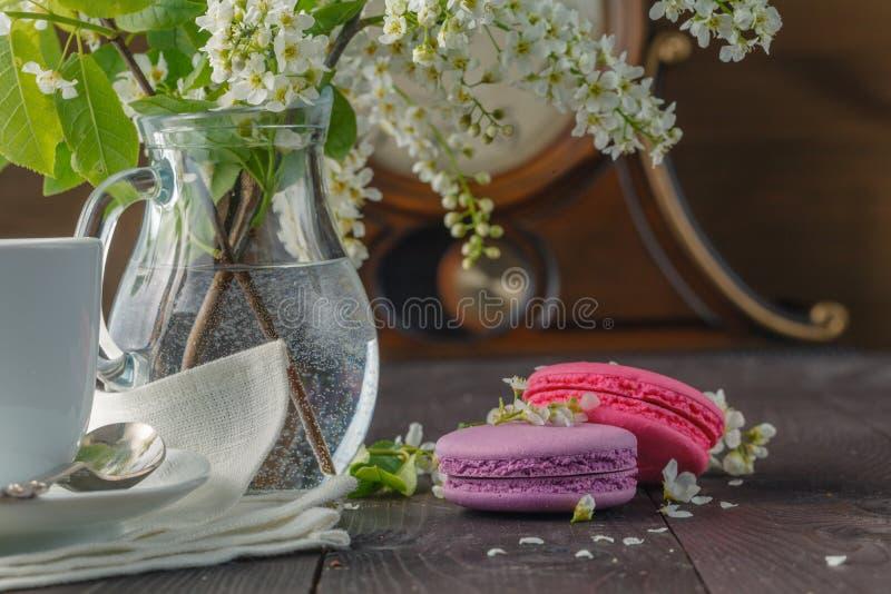 Makronen und Frühlingsblüte lizenzfreies stockfoto