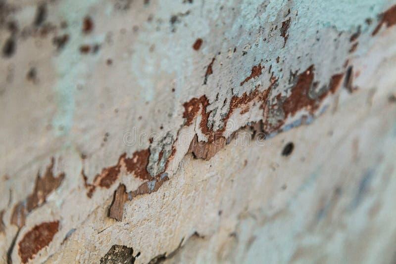 Makrophotographie des überlagerten Schalengipses mit Überresten von altem stockbild