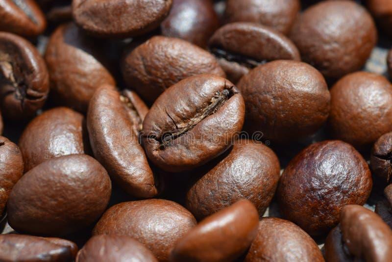 Makrophotographie von schönen Kaffeebohnen lizenzfreie stockfotos