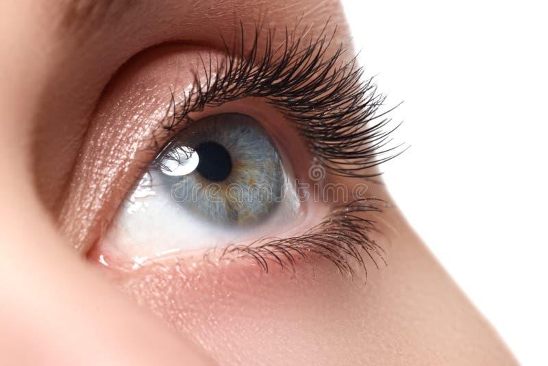 Makroschuß des schönen Auges der Frau mit den extrem langen Wimpern stockfotos