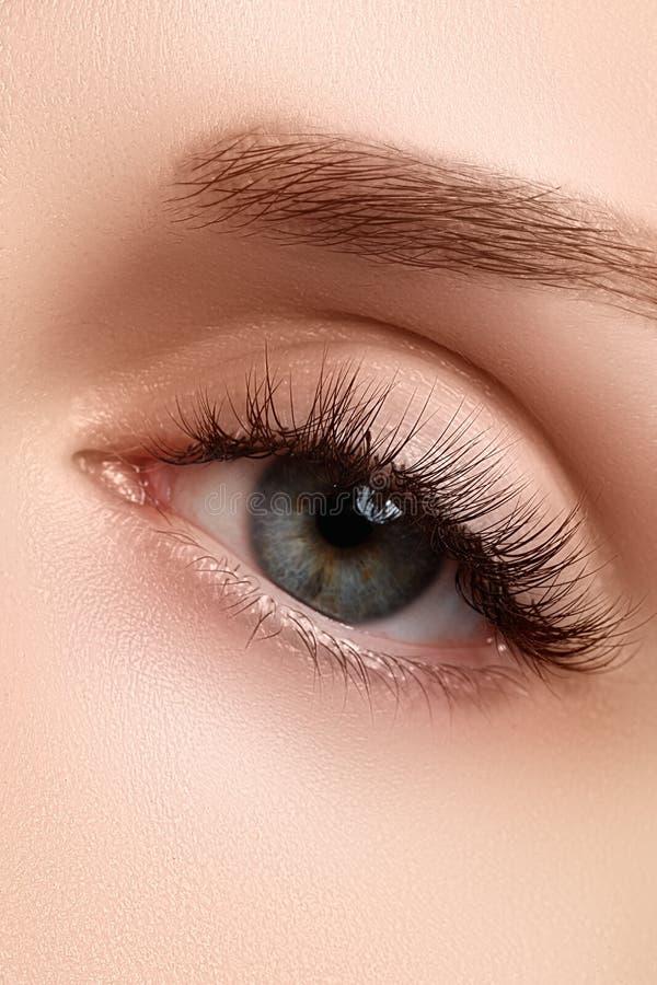 Makroschuß des schönen Auges der Frau mit den extrem langen Wimpern Sexy Ansicht, sinnlicher Blick Weibliches Auge mit den langen lizenzfreies stockbild