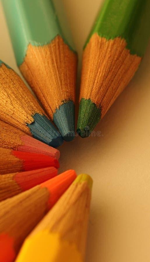 Makroschuß von vereinbarten farbigen Bleistiften stockbild