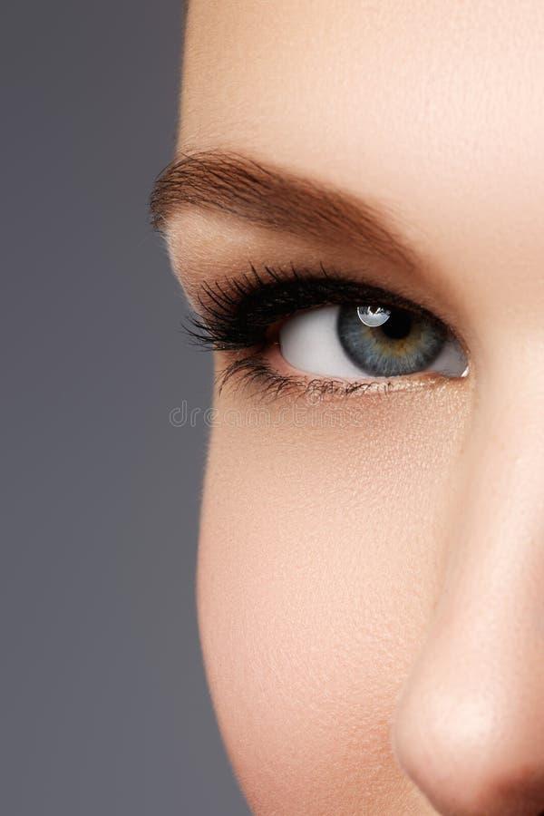 Makroskott av kvinnas härliga öga med extremt lång eyelashe arkivbild