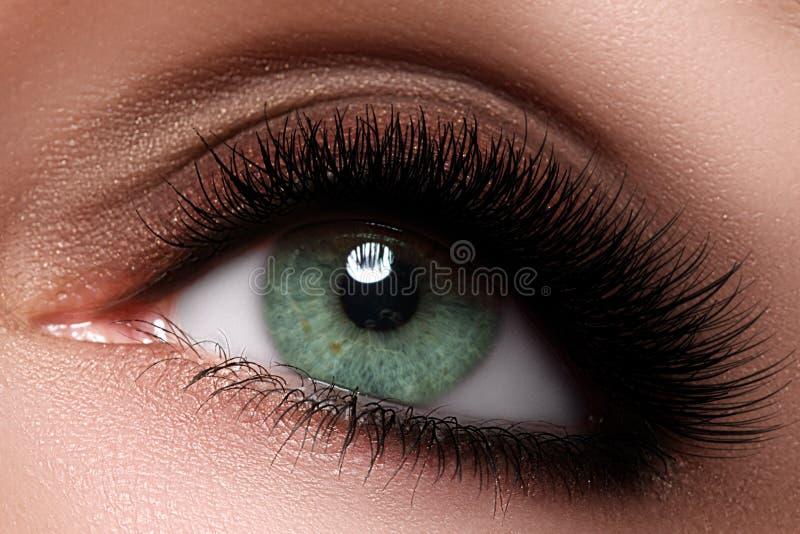 Makroskott av kvinnas härliga öga med extremt långa ögonfrans arkivfoto