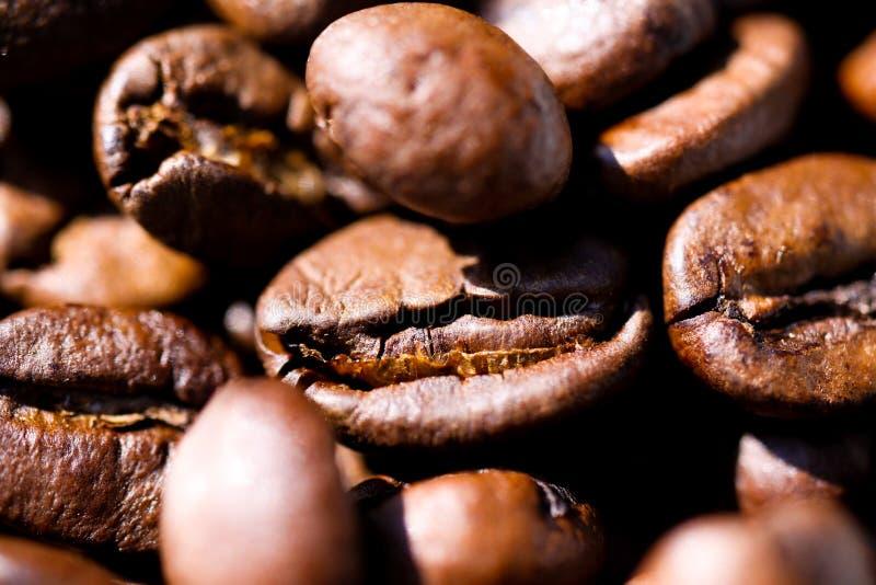 Makroslut upp av högen av grillade bruna kaffebönor i naturligt solljus som visar detaljer av yttersida royaltyfri foto