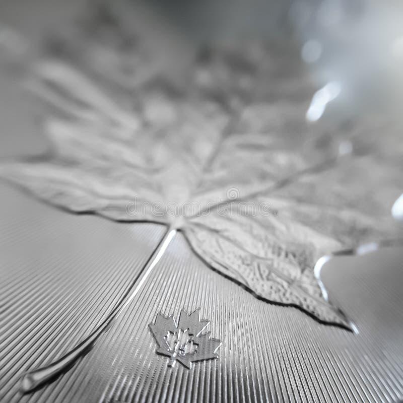 Makroslut upp av mynt för guldtacka för lönnlöv för 999% silver ett kanadensiskt royaltyfria bilder