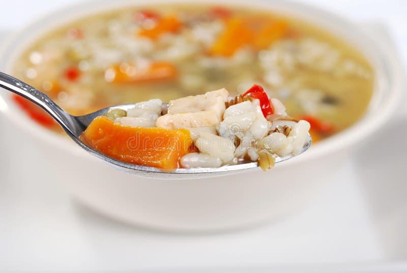 Makrospoonfulhuhn und Suppe des wilden Reises stockbilder