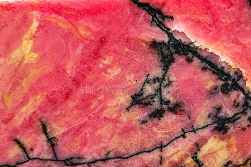 Makrosten Rhodonite som är mineralisk på vit bakgrund fotografering för bildbyråer