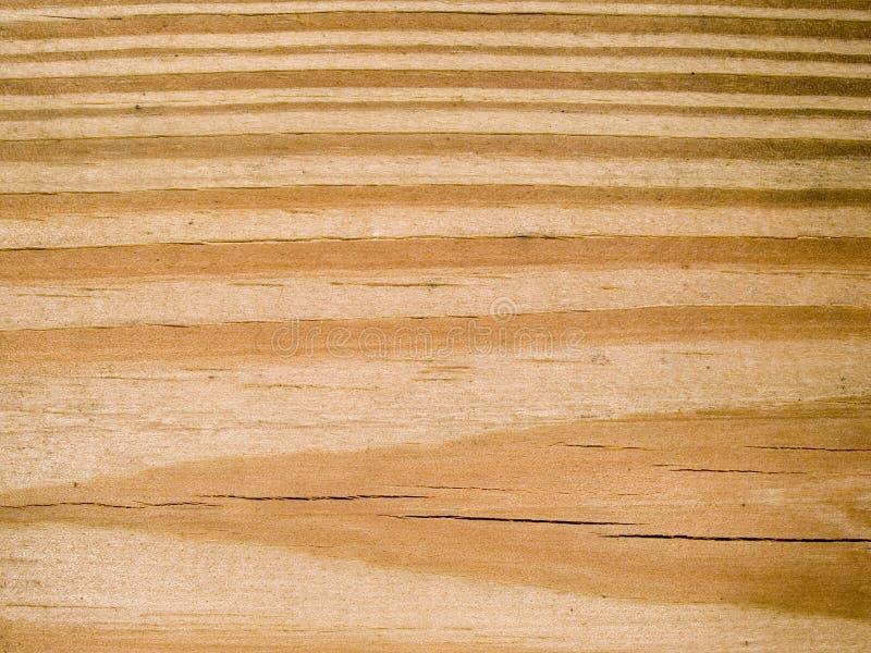 Makrotextur - trä - korn royaltyfri foto
