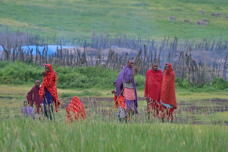 Makuyuni, Танзания, 9-ое февраля 2016: Люди племени Maasai стоковые фото