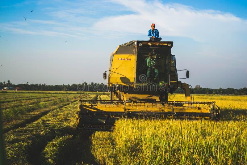 Malásia Paddy Harvesting Machine e trabalhadores fotografia de stock
