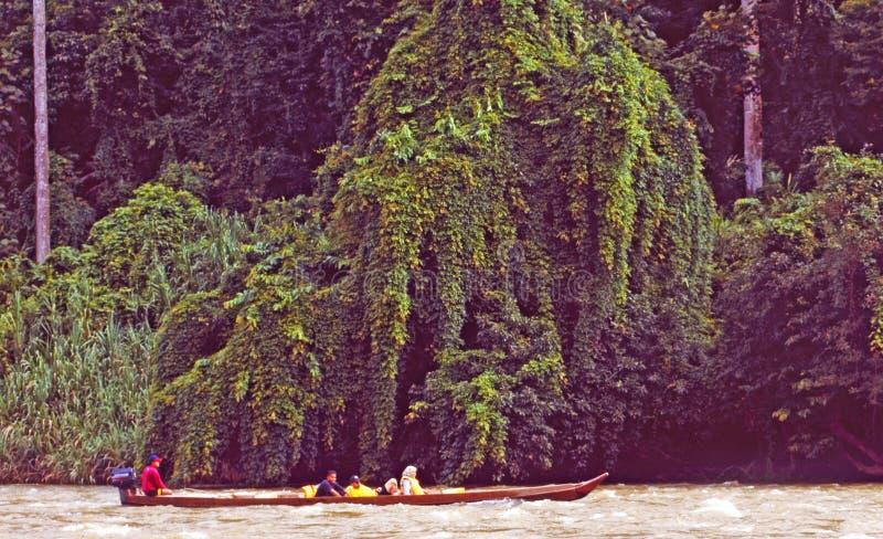 Malásia: Viagem do barco através do parque nacional e da floresta úmida de Taman Negara fotos de stock