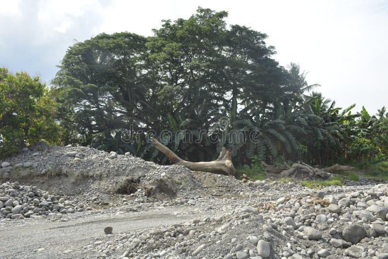 Mal河, Matanao,南达沃省,菲律宾河岸  免版税库存图片
