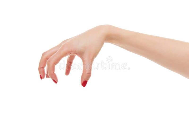 Mal femenino de la mano fotografía de archivo libre de regalías