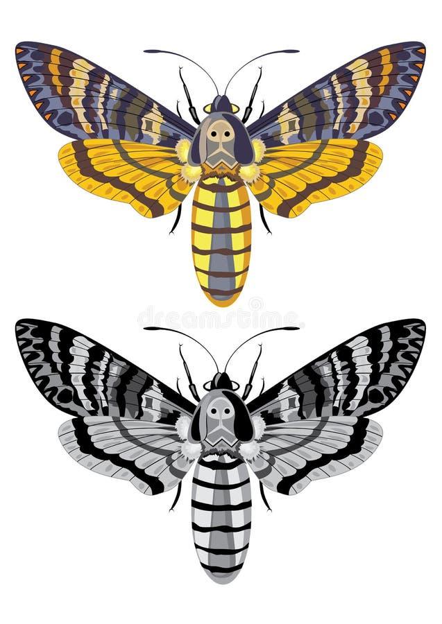 mal s för dödhökhuvud royaltyfri illustrationer